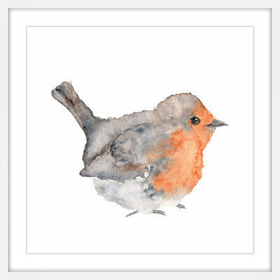 Marmont Hill Inc Marmont Hill - 'English Robin' by Thimble Sparrow Framed Painting Print