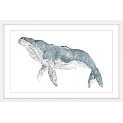 Marmont Hill Inc Marmont Hill - 'Humpback Whale' by Thimble Sparrow Framed Painting Print