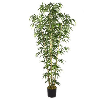 Wildon Home Bamboo Tree in Pot