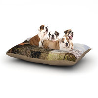 East Urban Home Angie Turner 'Mail Pouch Barn' Wooden House Dog Pillow with Fleece Cozy Top Size: Small (40
