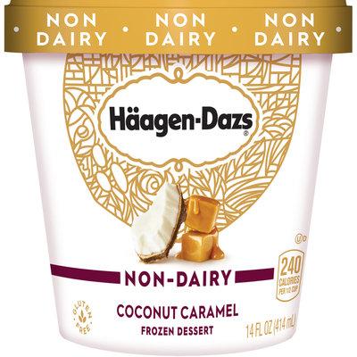 HAAGEN-DAZS Non-Dairy Coconut Caramel Frozen Dessert 14 fl. oz. Carton