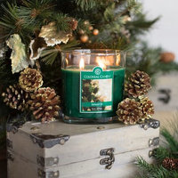 Colonial Candle CC008.5303 8 oz Balsam Fir Oval Jar Candle - Pack of 4
