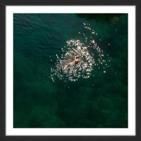 Marmont Hill Inc Marmont Hill - 'Breaststroke' by Karolis Janulis Framed Painting Print