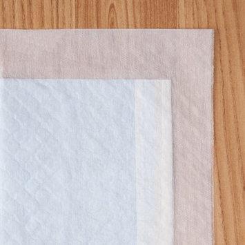 Iris Neat'n Dry Training Mat