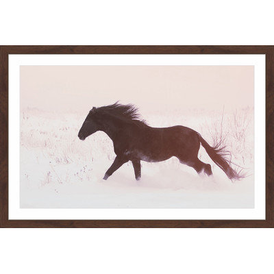 Marmont Hill Inc Marmont Hill - 'Black Beauty Gallops' Framed Painting Print