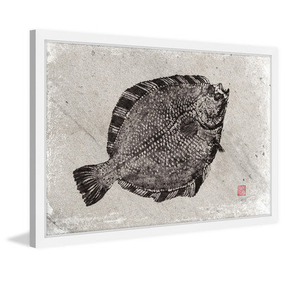 Marmont Hill Inc Marmont Hill - 'Starry Flounder' by Dwight Hwang Framed Painting Print