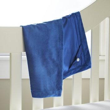 Berkshire Blanket Polymink Stroller Blanket Color: True Blue