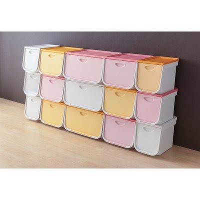 Iris 22 Quart Plastic Flap Box Color: White