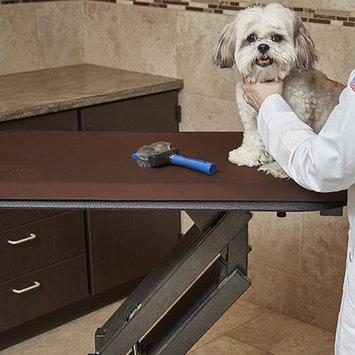 Wellnessmats Pet Mat Color: Brown, Size: Small: (28