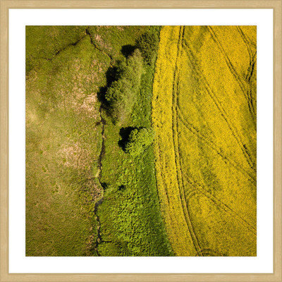 Marmont Hill Inc Marmont Hill - 'Green Land' by Karolis Janulis Framed Painting Print