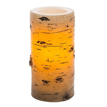 Loon Peak Birch Unscented Flameless Candle Size: 6