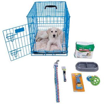 Aspen Pet Puppy Starter Kit Color: Blue