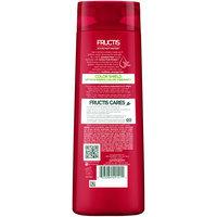 Garnier® Fructis® Color Shield Shampoo 12.5 fl. oz. Bottle