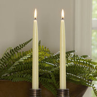 Birch Lane Ivory Tapered Candlesticks