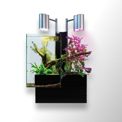 Brioaquaponics 9.5 Gallon Aquaponics System Aquarium Kit Color: Black