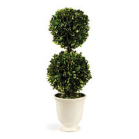 One Allium Way Gaudreau Double Ball Topiary in Pot