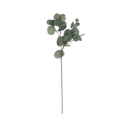 Charlton Home Artificial Eucalyptus Leaf Floral Stem