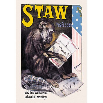 Buyenlarge Professor Staw and His Wonderful Educated Monkeys by F. Garric Vintage Advertisement Size: 66