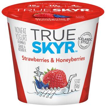 Dannon of the World™ True Skyr™ Strawberry & Honeyberries Yogurt 5.3 oz. Single Serve