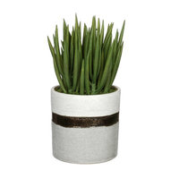 House Of Silk Flowers Artificial Sea Sanded Ceramic Aloe Plant in Decorative Vase