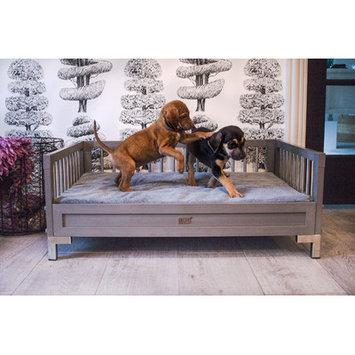 New Age Pet EcoFLEX Manhattan Dog Sofa with Memory Foam Cushion Color: Gray, Size: Medium