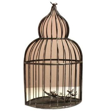 August Grove Warren-Shriner Alluring Iron Decorative Bird Cage