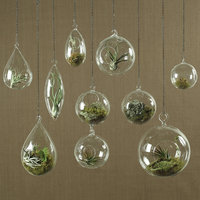 Ivy Bronx Berna Glass Hanging Planter