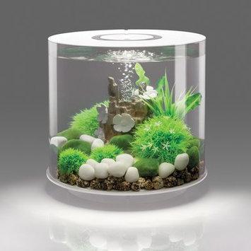 Biorb 4 Gallon Tube 15 LED Aquarium Tank Size: 12.4