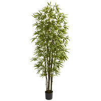 Darby Home Co Green Bamboo Tree in Pot