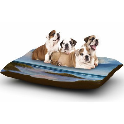 East Urban Home Rosie Brown 'Summer Showers' Beach Dog Pillow with Fleece Cozy Top