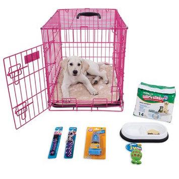 Aspen Pet Puppy Starter Kit Color: Pink
