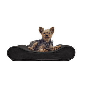 Furhaven Microvelvet Luxe Orthopedic Dog Bed Size: Small (21