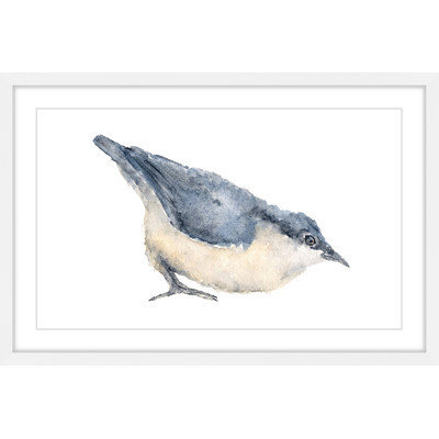 Marmont Hill Inc Marmont Hill - 'Nuthatch Bird' by Thimble Sparrow Framed Painting Print