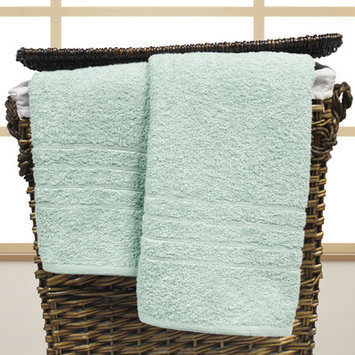 Charlton Home Spa Cotton Oversized Bath Sheet Color: Sky