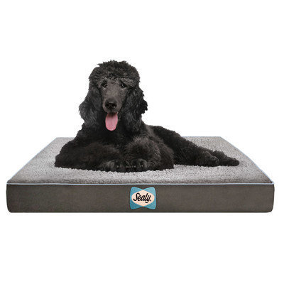 Sealy Supreme Sherpa Dog Bed Color: Modern Gray, Size: XLarge
