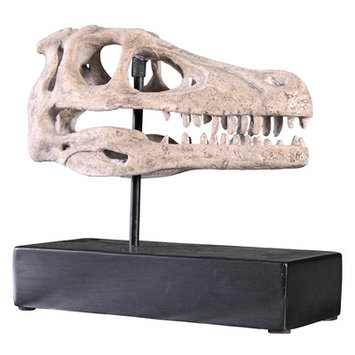 Design Toscano Raptor Skull On Mount