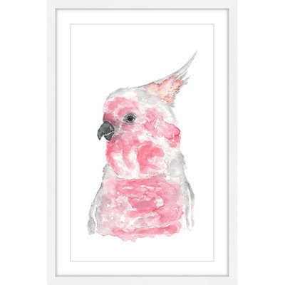 Marmont Hill Inc Marmont Hill - 'Major Mitchell's Cockatoo' by Thimble Sparrow Framed Painting Print