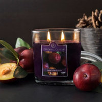 Colonial Candle Sweet Black Plum Oval Scented Jar Candle Size: 7