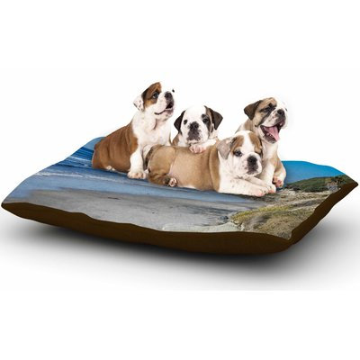 East Urban Home Nick Nareshni 'Swamis Beach Coast' Coastal Dog Pillow with Fleece Cozy Top