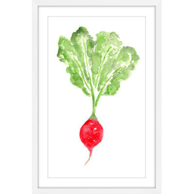 Marmont Hill Inc Marmont Hill - 'Radish' by Thimble Sparrow Framed Painting Print