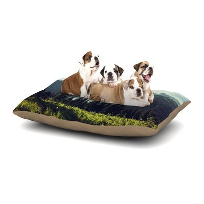 East Urban Home Sylvia Cook 'Discover Your Northwest' Landscape Dog Pillow with Fleece Cozy Top Size: Small (40