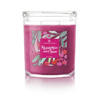 Colonial Candle CC022.5400 22 oz Oval Jar Candle Raspberries & Cream Pack of 2