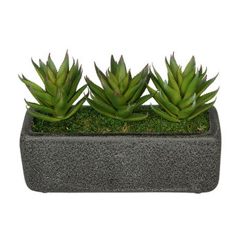 House Of Silk Flowers Artificial Green Aloe Plant in Decoratiove Vase Base Color: Black
