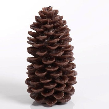 Loon Peak Pine Cone Glass Novelty Candle Size: Medium