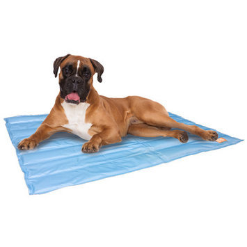 Animal Planet Cooling Gel Pet Mat Size: 20