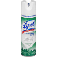 Lysol® Adirondack Cool Air Lightly Scented Disinfectant Spray 19 oz. Can