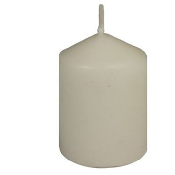 Charlton Home Essential Decor & Beyond Votive Unscented Candle Color: Off White