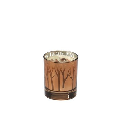 Alcott Hill Woodland Maple Butter Scented Candle