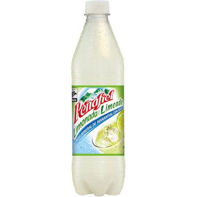 Penafiel® Limeade Mineral Spring Water 20.3 Fl Oz Bottle