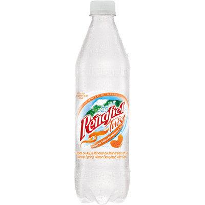 Penafiel® Twist Mandarina Mineral Spring Water 20.3 Fl Oz Bottle